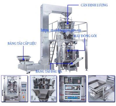 Cấu tạo máy đóng gói cân định lượng