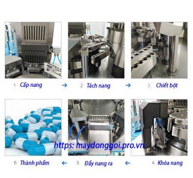 Quy trình làm việc của máy đóng nang tự động